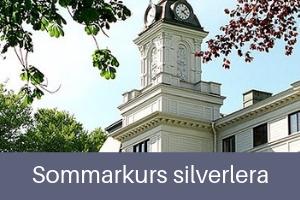 Sommarkurs silverlera
